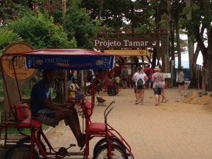 Vila, entrada do Projeto Tamar